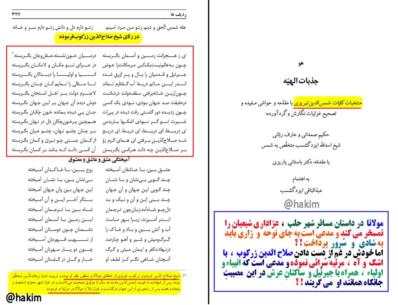 پارادوکسِ مولانا ، مهمترین دست مایه ی رسوایی او